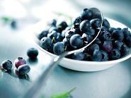 blueberries to lose weight